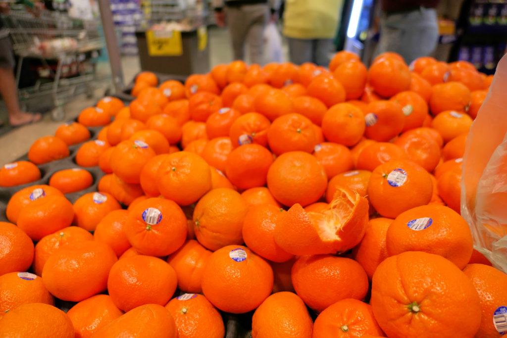 オレンジ試食